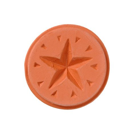 Christmas Cookie Stamp – star